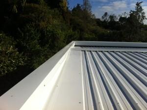 Verran Rd 1 300x224 - Roofing Gallery